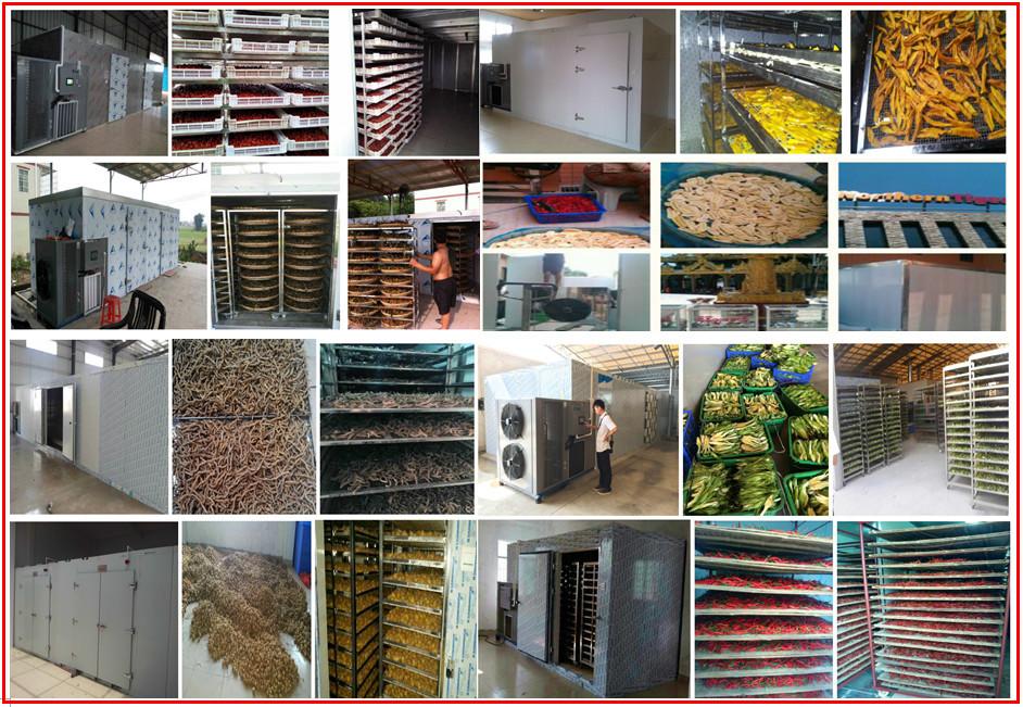 Máy sấy lạnh được áp dụng mọi nông sản, và thực phẩm